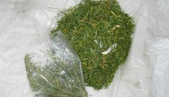 Более килограмма каннабиса изъяли правоохранители у жительницы Ярмолинецкого района